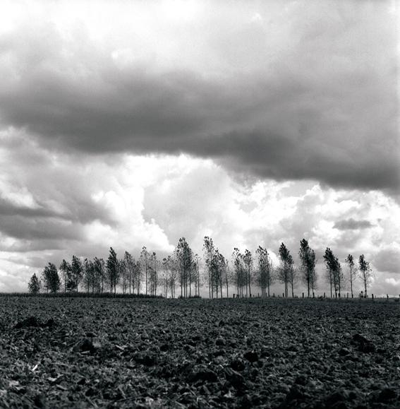 Argonne/2009